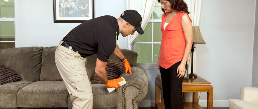 Vineland, NJ carpet upholstery cleaning