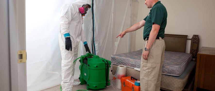 Vineland, NJ mold removal process